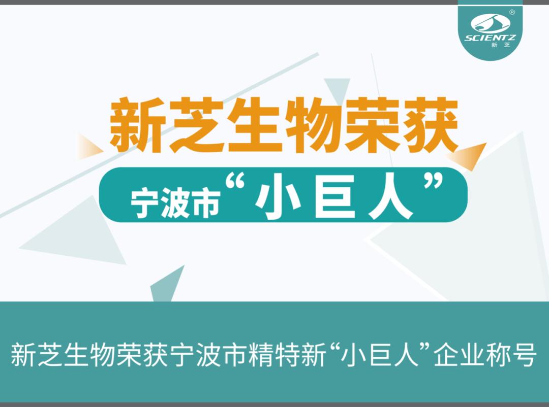 """新芝生物荣获宁波市精特新""""小巨人""""企业称号"""